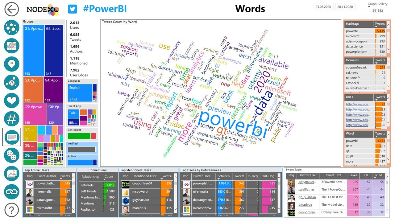 NodeXL Pro Insights Words